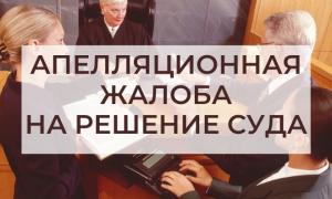 Подача апелляционной жалобы на решение суда первой инстанции