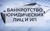 Заявление в арбитражный суд о банкротстве ИП и юр лиц